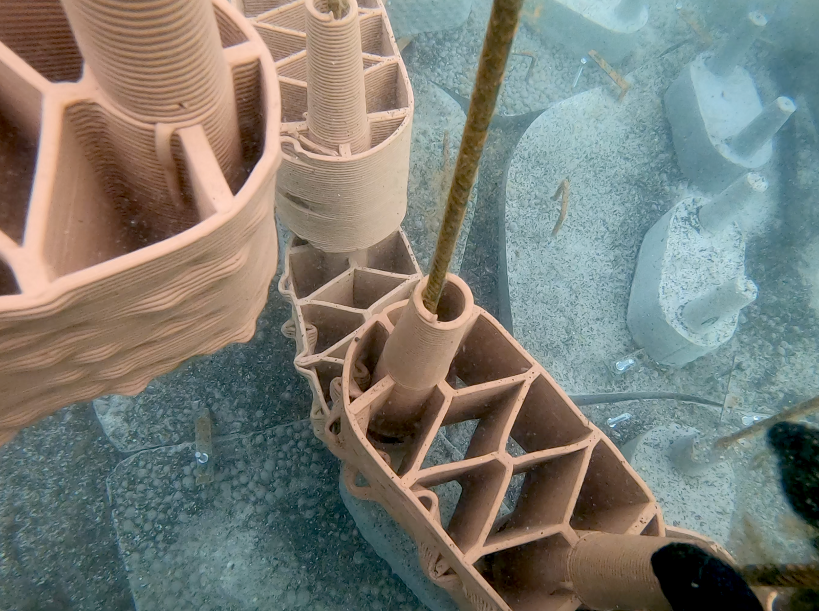 Detail of the clay prototypes during installation under water. © Marie Griesmar/rrreefs